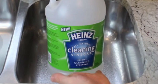 How to Properly Clean Garbage Disposal